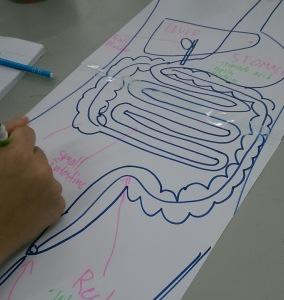 drawing dig