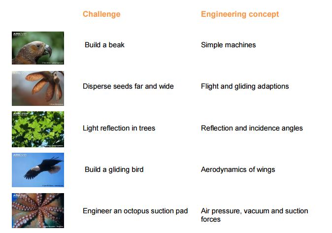 Arkive engineering